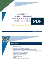 Capitulo II. Marco Teórico - CITAS