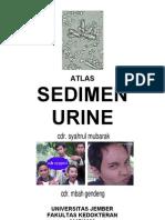 Atlas Sedimen Urine