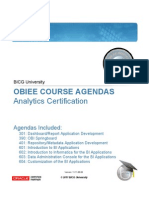 BICGU Agendas for Analytics Certification