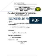 38979613-FERMENTACION-ACETICA