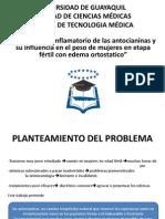 Sustentacion PDF 1