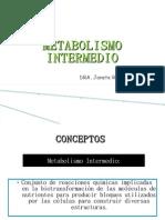 METABOLISMO INTERMEDIO