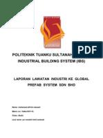Ibs Report