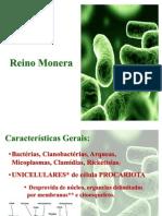 62180054-Reino-Monera-Etapas-1-e-2