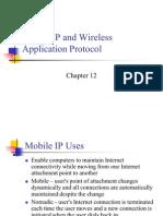 Mobile Ip& Wap
