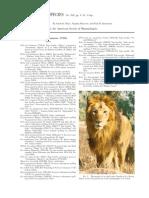 762 Panthera Leo