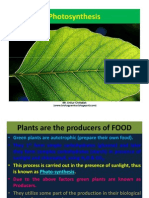 Chapter 6. Photosynthesis