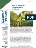 Alface organico - EMBRAPA