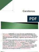 QCA ORG III Carotenos[1]