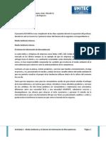 Actividad No 2 El Medio Ambiente y el Sistema de Información