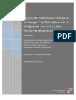 Proyecto Cálculo Metodología 10-08-11