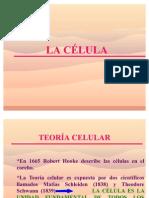 LA_CELULA