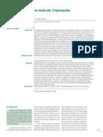 Patologia Descenso Testicular Criptorquidia