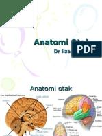 Anatomi Otak Dr Liza Presentasi Makalah (Pasca Sarjan STAIN Cirebon)