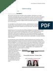 E-Vaardigheden Videobewerking Cyber Pest En