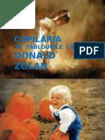 COPILARIA ÎN TABLOURILE LUI ZOLAN