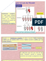 BIOLOGIA - Biologia - Genetica (Mendel)