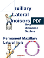 Maxillary Lateral Incisors FINAL