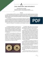 Historia Procesos Produccion y Redes Metalurgicas
