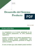 Desarrollo Del Sistema Producto