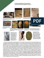 Radacini PDF