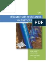 Registros de Resonancia Magnetica Nuclear
