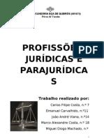 Profissões Jurídicas e Parajurídicas