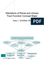 Renal Concept Map