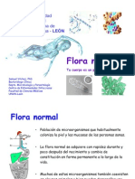 FloraNormal_SV