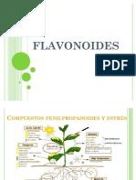 QPN - Flavonoides