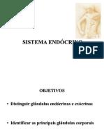 Aula Anatomia 9