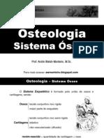 Anatomia - osteologia, sistema ósseo