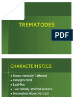 Trematode