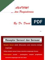 Anatomi Sistem Penginderaan