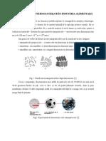 NanotehnologiiIndustriaAlimentara