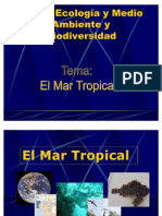Mar Tropical