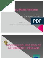 Riquezas Del Mar Peruano 3.1.