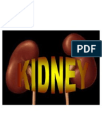 Diät Dopo Cholezystektomie pdf