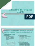 foto_pb