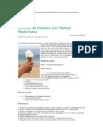 Recetas de Helados Con Plantas Medic in Ales