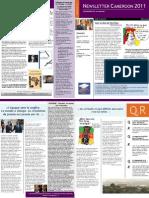 Cameroun-Présidentielle-2011-Newsletter
