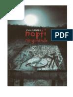 Ion+Santea+-+Nopti+Sangerande