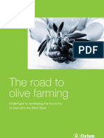 The Road to Olive Farming