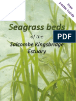 Salcombe Seagrass Beds Leaflet