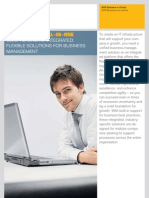 SAP Business All-In-One flyer