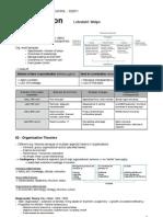 TUM-BWL SS2011 - Organisation Zusammenfassung