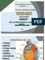 TOMA DE MUESTRAS BIOLOGICAS EXUDADO OTICO