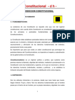 4Jurisdiccion Constitucional (Derechos Humanos)