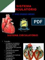 sistema cardiaco
