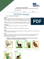 Guía de Estudio , Reforzamiento de Cs. Naturales Clase 1 Cesia Martínez